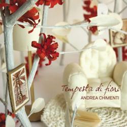 andreachimenti_tempesta
